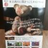 2013-11-19-14-52-31_photo羽毛ベア