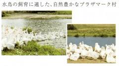 羽毛掛けふとん_PU1530_02